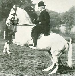 Oskar Maria Stensbeck in der hohen Schule
