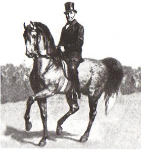 """Der Reitmeister Gustav Steinbrecht prägte den Leitsatz """"Reite dein Pferd vorwärts und richte es gerade"""""""