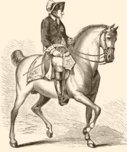 Die Hilfen des Reiters: Warum die ständige Einwirkung von Hand oder Schenkel nicht zum Ziel führt