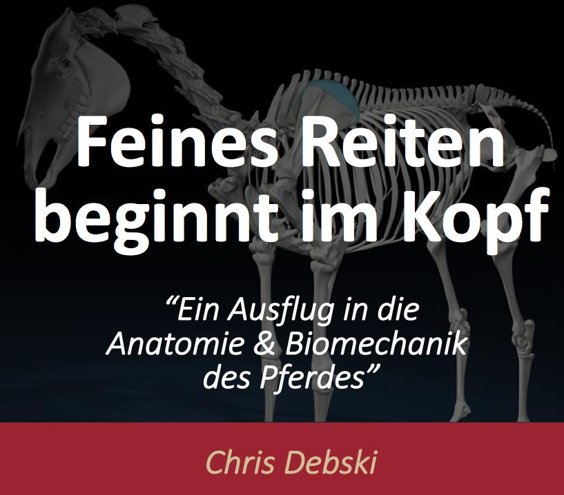 Feines Reiten beginnt im Kopf - Webinar Aufzeichnung - Pferde gesund ...